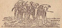 Щенки, играющие с палкой